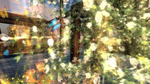 Heaven lake romantique et si doux